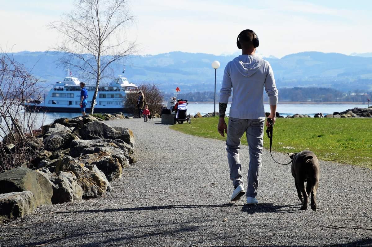Urlaub mit Hund am See Bodensee mit Hund