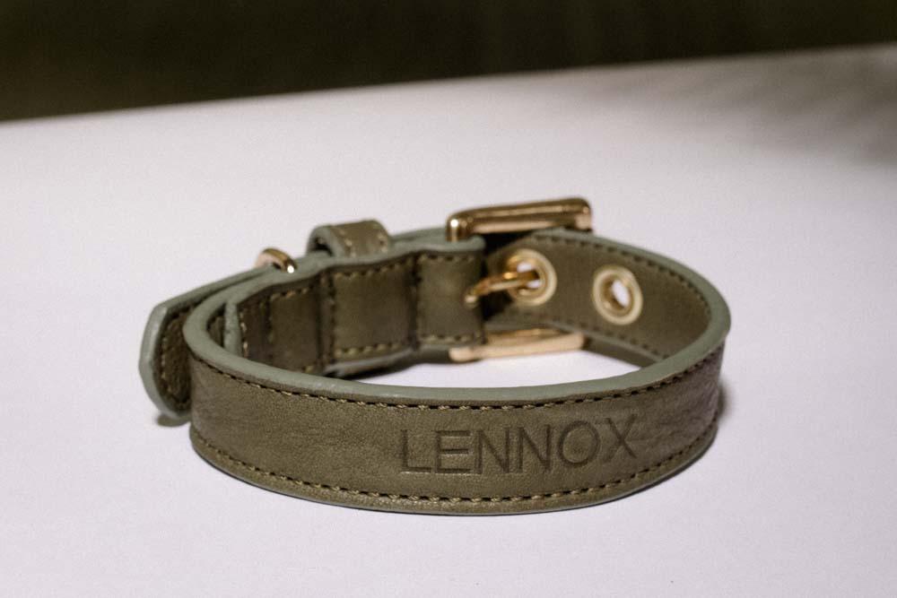 Personalisiertes Hundehalsband