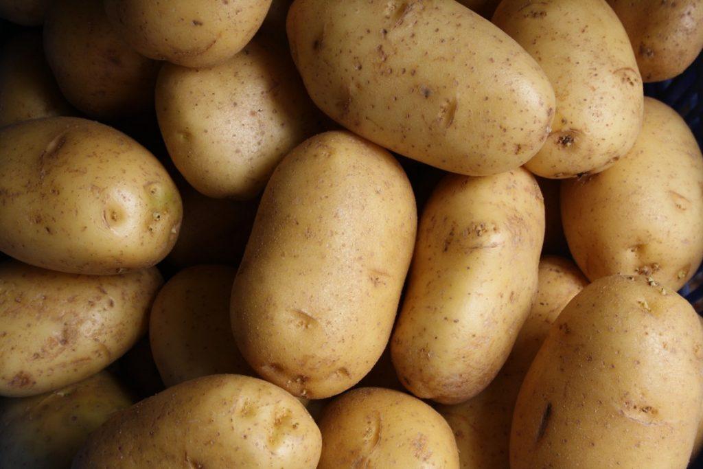 Kartoffeln Hund